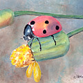 Lady Bug - Lady Bug... by Arline Wagner