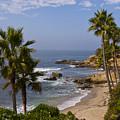 Laguna Beach Coastline by Lou Ford