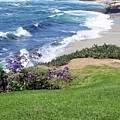 Lajolla Shores by Kevin Igo