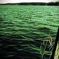 Lake Murray Lure by Janele Wilson