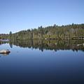 Lake Side View by Kate  Leikin