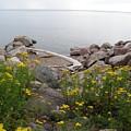 Lake Superior Shore by Alice Markham