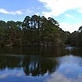 Lake Thomas Hilton Head by Thomas Marchessault