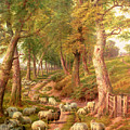 Landscape With Sheep by Charles Joseph
