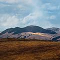 Las Trampas Hills by Karen  W Meyer