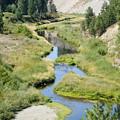 Latah Creek by Ben Upham III