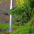 Latourell Falls Oregon by Rich Walter