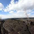 Lava Field by Mary Haber