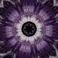 Lavender Iris by Charleen Treasures