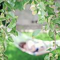 Lazy Days Of Summer by Lisa Knechtel
