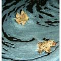Leaving Ripples by Roberta  Gennaci-Attalla