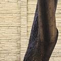 Legs by Viktor Savchenko