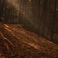 Light Breaking Thru by Andrew Soundarajan