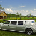 Light Limousine In The Meadow by Roberts Ratuts