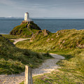 Lighthouse Twr Mawr by Adrian Evans