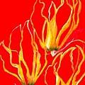 Lilies That Climb IIi by Carliss Mora