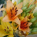 Lillies - Peach And Yellow Colors by Michael Thomas