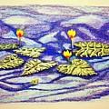 Lily Pad Pond by J R Seymour