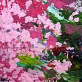 Lily Pads by Kim Putney
