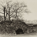 Lime Kilns At Plymouth Meeting by Bill Cannon