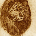 Lion by Linda Powell