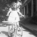 Little Girl On Vintage Bike by Cheryl Viar