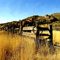 Livery Fence At Dripping Springs by Kurt Van Wagner
