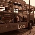 Local by Linda De La Rosa