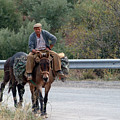 Local Travells By Donkey by Cliff Norton