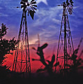 Lone Star Sunset by Stephen Anderson