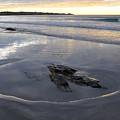 Longsands Rock 2 by Catherine Easton