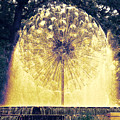 Loring Fountain by Rashelle Brown