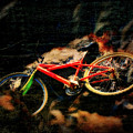 Lost Bike by Perry Webster