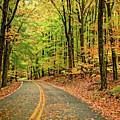 Lost In Pennsylvania by Steve Harrington