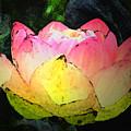Lotus Fresco by Annie Johnson