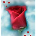 Love Is In The Air by Linda Sannuti