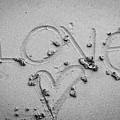 Love by Lillian Michi Adams