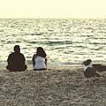 Lovebirds by Peg Urban