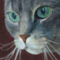 Lullabella by Jennifer Hickey
