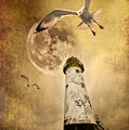 Lunar Flight by Meirion Matthias