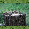 Lunch Time At The Tree Log Diner by Judy  Waller