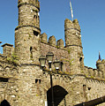 Macroom Castle County Cork Ireland by Teresa Mucha