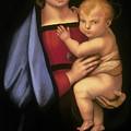 Madonna Del Granduca by Rebecca Poole