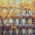 Madrid Facade In Late Autumn by Julia Davila-Lampe