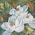 Magnolias Five by Diane Ziemski