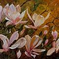 Magnolias by Pol Ledent