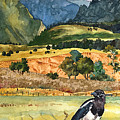 Magpie by Anne Gifford