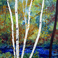 Maine Birch Stream by Laura Tasheiko