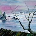 Maine Seawatch by Brenda Owen