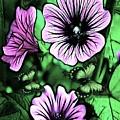 Malva Flowers by Madeline  Allen - SmudgeArt